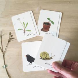 Set Mini kaartjes -  Tuin