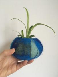 Vilten potje met plantje