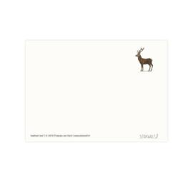 Postkaart - Edelhert