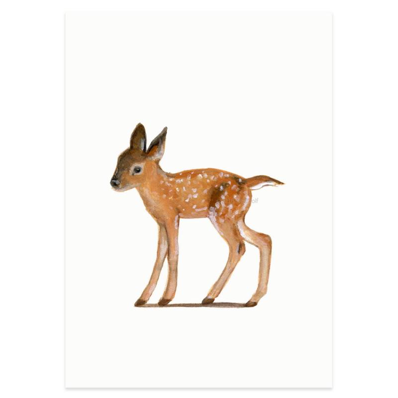 Postkaart - Jong edelhert