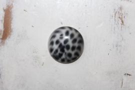Polaris cabochon  Leopard Black 12 mm