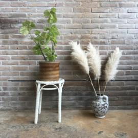 vintage plantentafel rotan wit