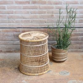 Rotan bijzettafel planten