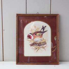 Lijst met vogel poster