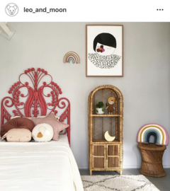 Rotan kast bij LEO and MOON