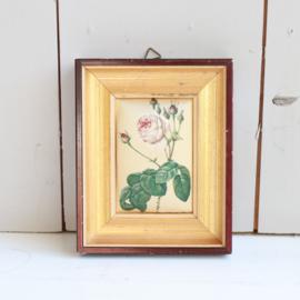 Vintage lijstje goud en roos