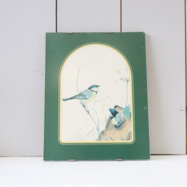 Vintage lijst vogels
