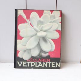 Prentenboek Vetplanten AJ. v. Laren