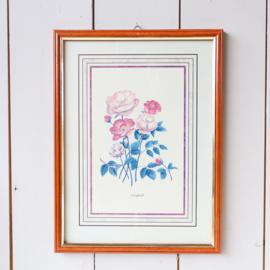 Vintage grote  lijst met rozen