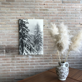 Oude plaat sneeuw bomen