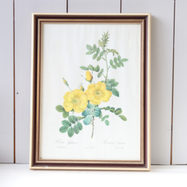Vintage rozen print grote lijst