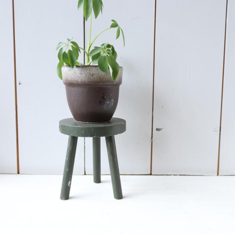 Mini plantentafeltje groen