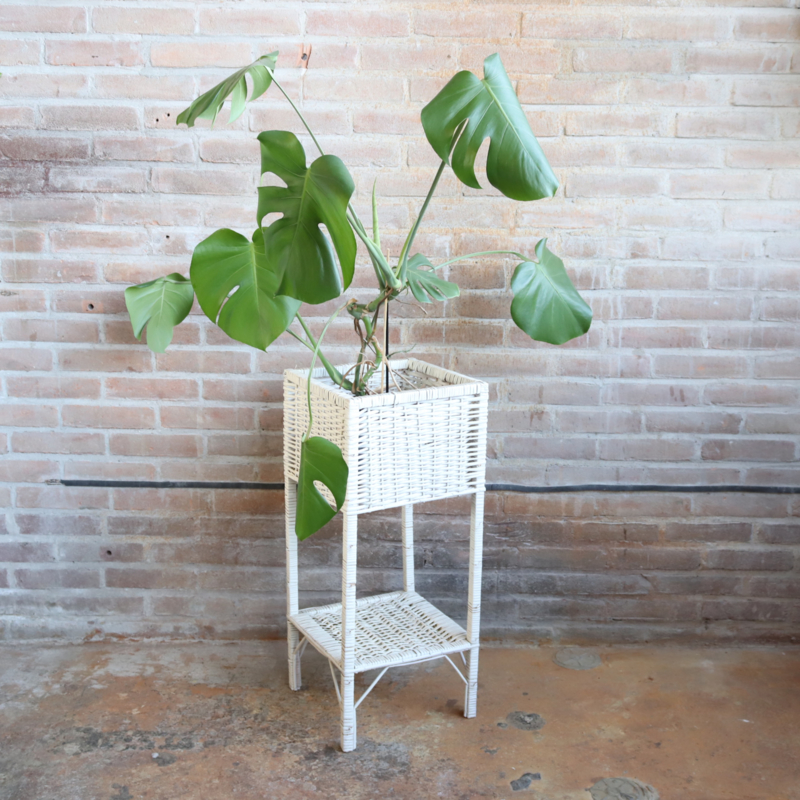 Vintage plantentafel wit riet