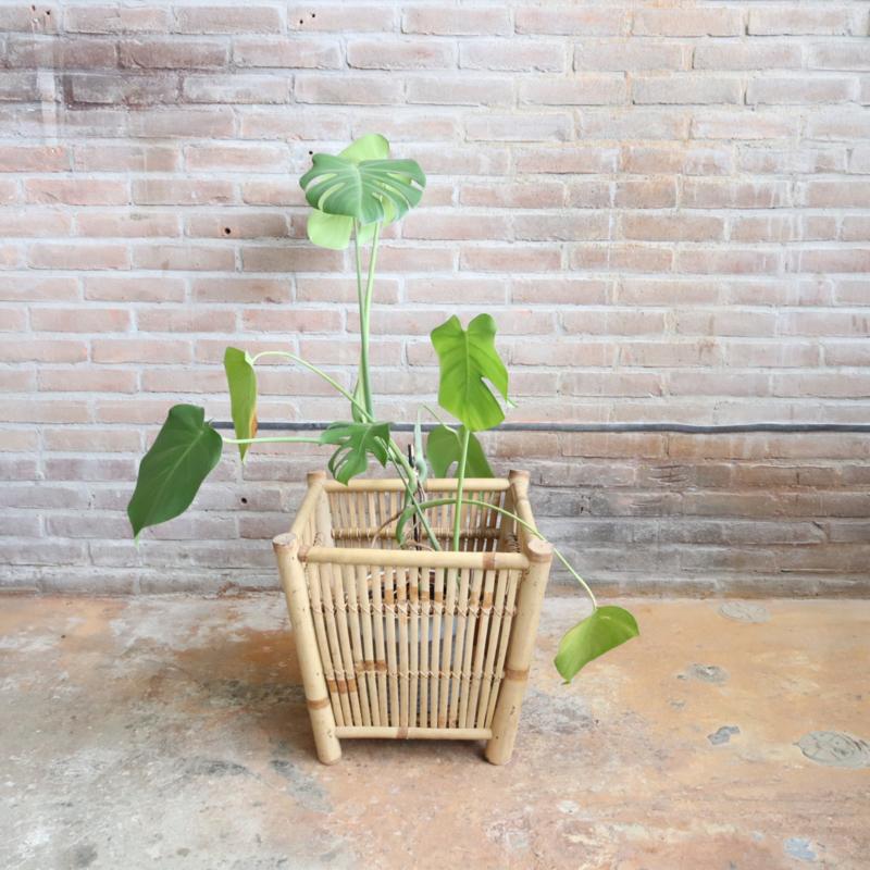 Vintage plantenbak rotan