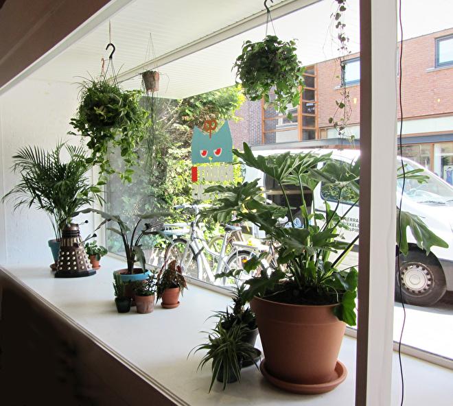 groen kantoor veel planten styling