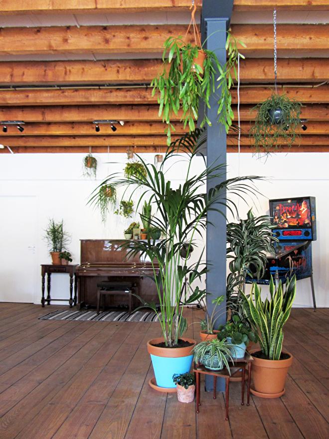 interieuradvies kantoor groen planten het gooi