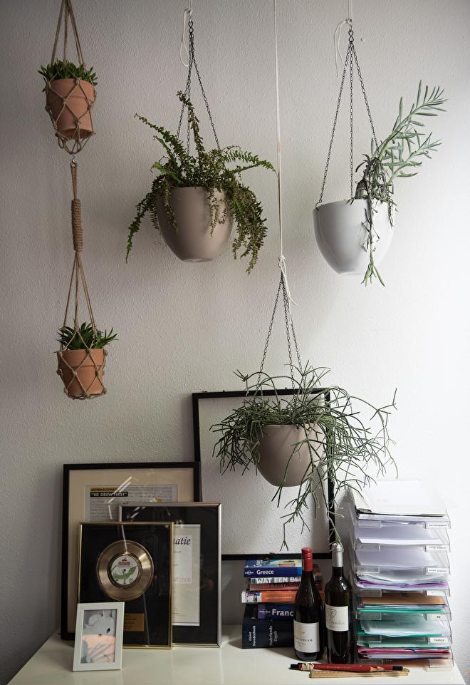 interieur styling planten kantoor amsterdam groen