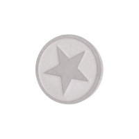 Top Part star ( zilver)