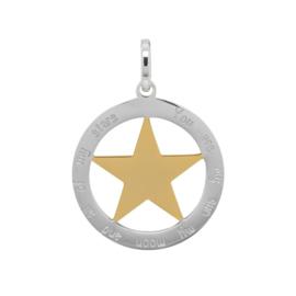 ixxxi hanger zilver met gouden ster