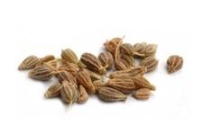 Anijszaad | Pimpinella anisum fructus