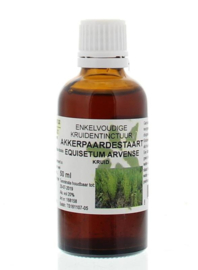 Akkerpaardenstaart tinctuur -Equisetum arvense