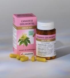 Canadese Geelwortel