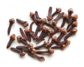 Kruidnagel -Sizigium aromaticum