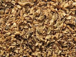 Cichorei | Cichorium intybus