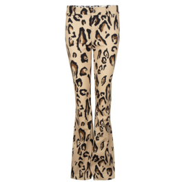 Iconic27 - Flared Trouser - Tiger