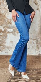 Homage - Flared Jeans  - Bright Blue