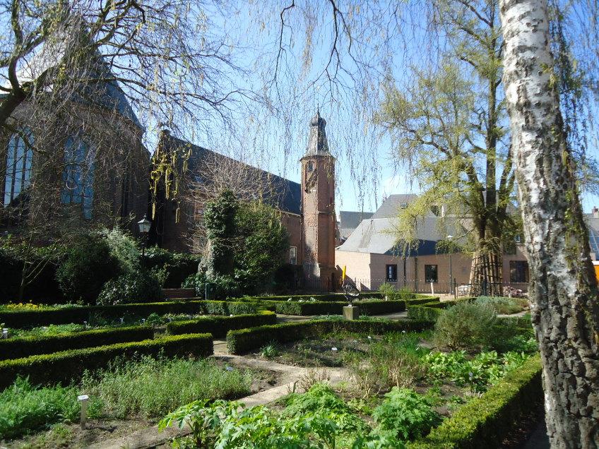 Stadswandeling Harderwijk