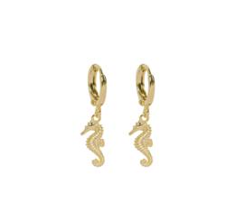 Oorringetjes zeepaardje - goud
