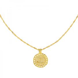 Ketting munt natuurlijk - goud