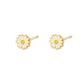 Oorknopjes daisy wit - goud
