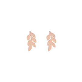 Leafs Rose Gold