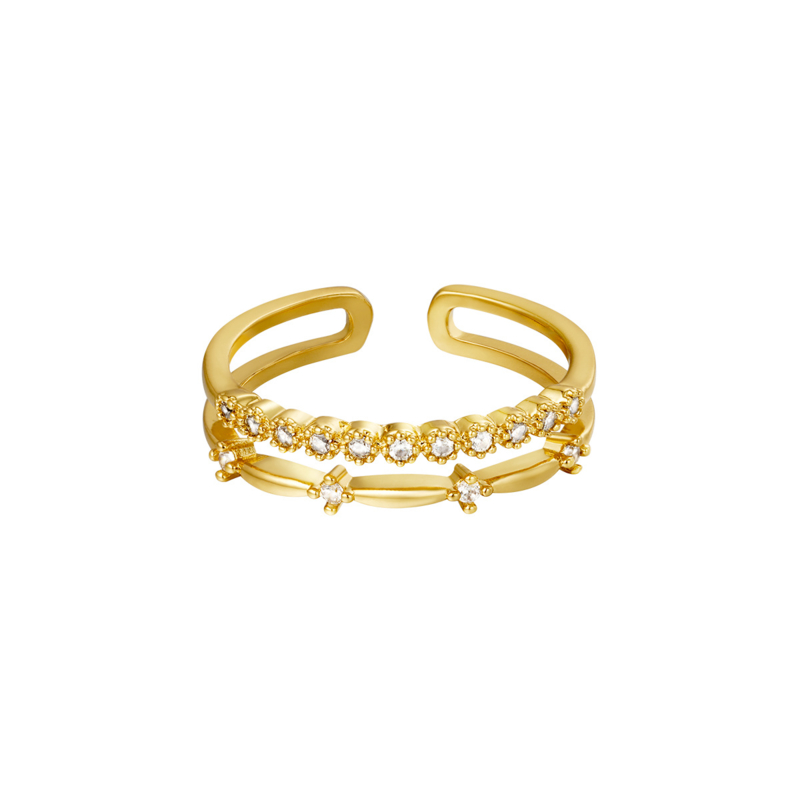 Ring double fancy - goud