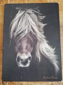 Paard nostalgische prent