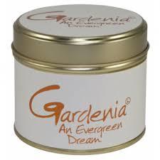 Lily-Flame Gardenia