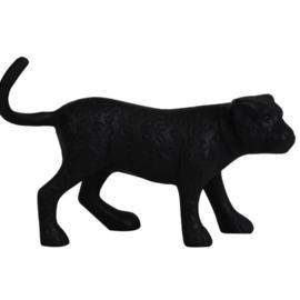 Panter zwart