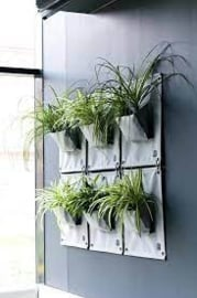 Plantenzak wit binnen & buiten