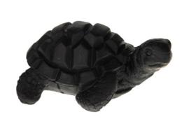 Schildpad zwart 11cm