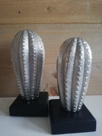 Cactus zilver 16