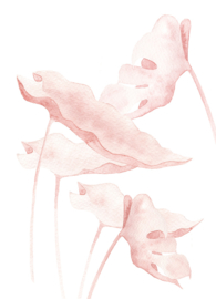 A5 Art Print | Botanical Blush #02