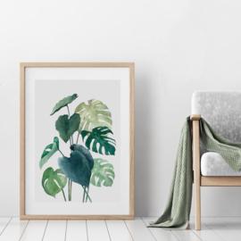 A3 Art Print | Botanical #04