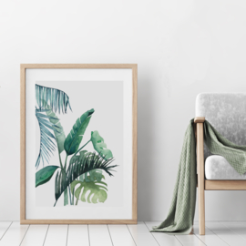 A3 Art Print | Botanical #01