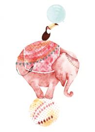 Postkaart | Circus Olifant