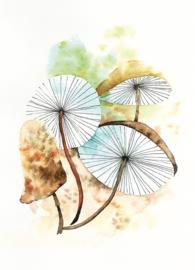 Postkaart | Mushroom Haze