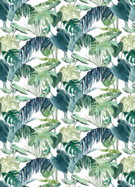 Postkaart | Palm Leaves