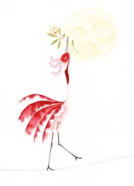 Postkaart | Circus Kraanvogel