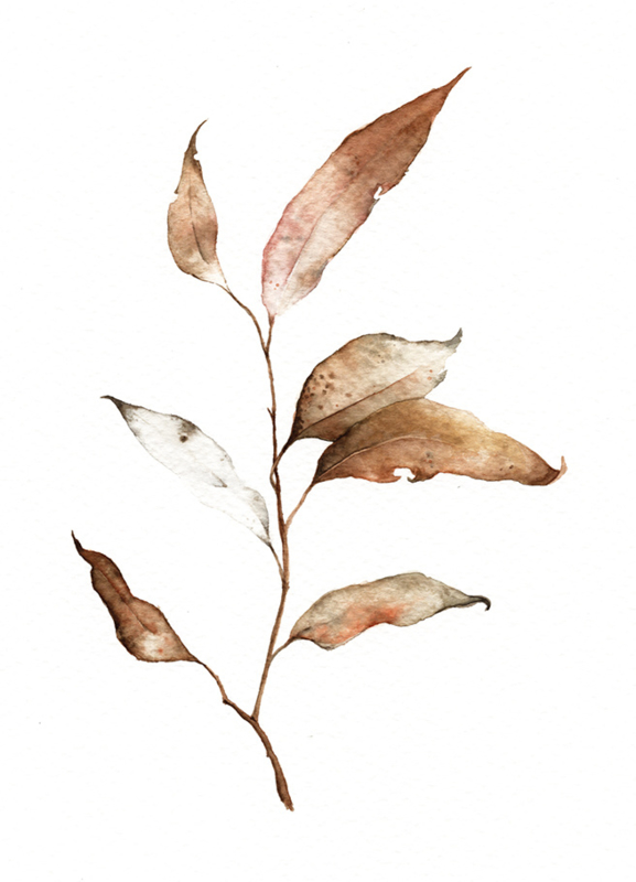 Postkaart | Brown Leaf